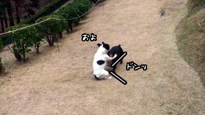 20110113153655(2).jpg