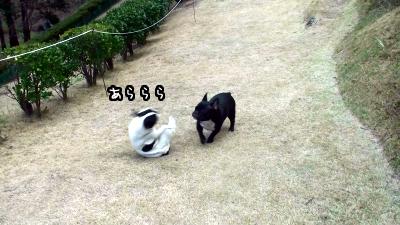 20110113153655(5).jpg
