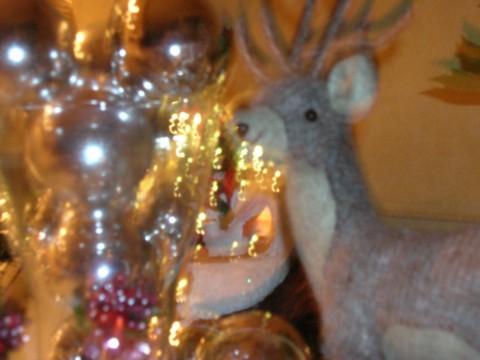 2011クリスマス1