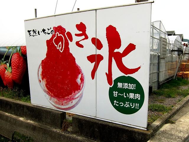 0513-itigoya-01-S.jpg