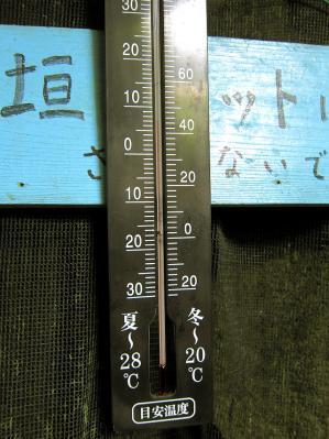 0730-itigoya-11-S.jpg