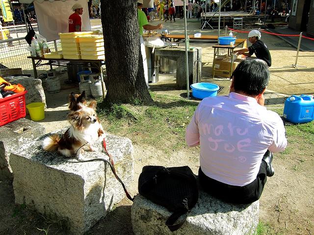 1104-tamatukuri-f-07-S.jpg