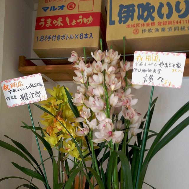 yamabukiya-29-S.jpg