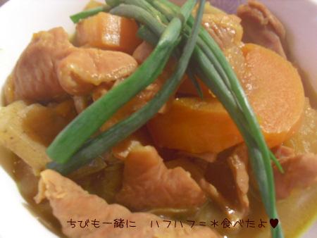 2010_02_23_10.jpg