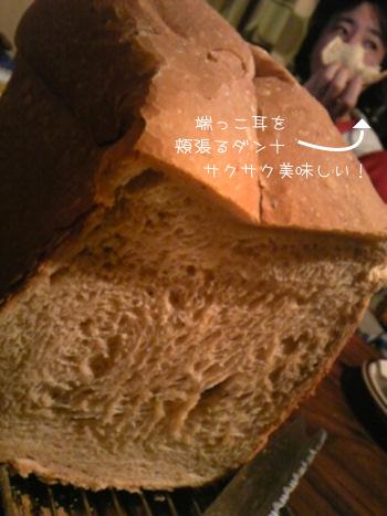 2010_2_18_7.jpg