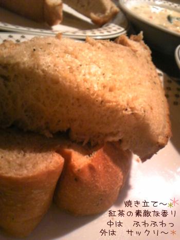 2010_2_18_8.jpg