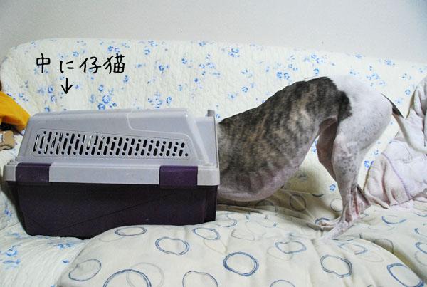 20110930 002