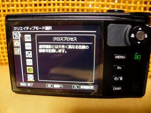 DSCI0899.jpg
