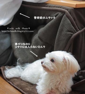 IMG201212_1544.jpg
