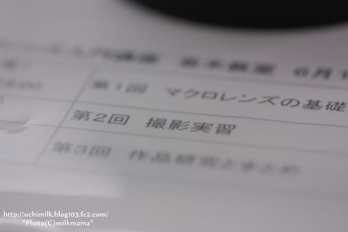 IMG2012_6575.jpg