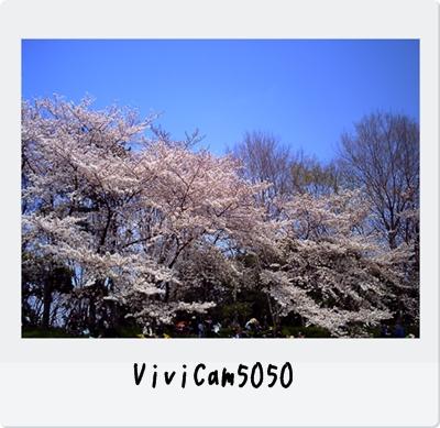 PICT0531.jpg