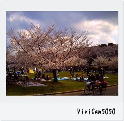 PICT0536_20100405000558.jpg