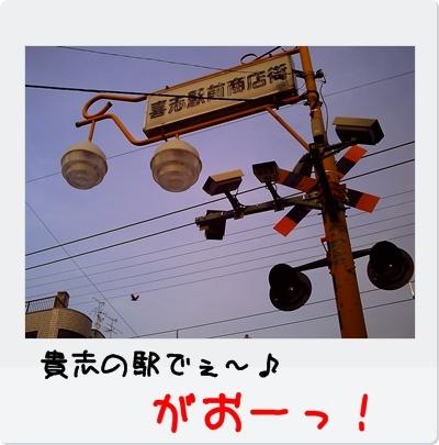 PICT0612.jpg