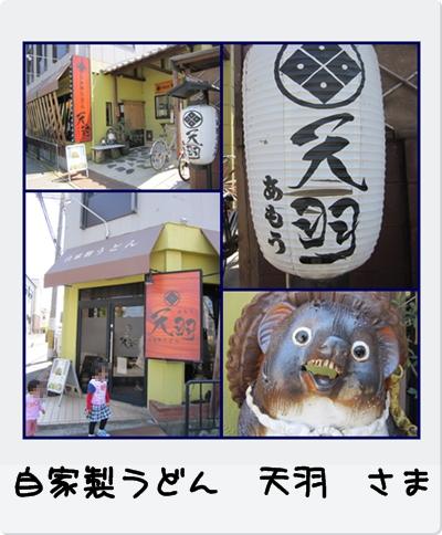 cats_20100425181630.jpg