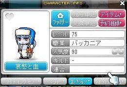 MapleStory_101130_100610_480.jpg