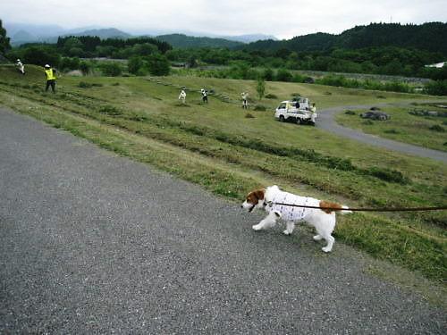 2011おでかけ206