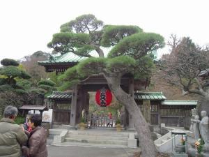 30日 鎌倉 (15)