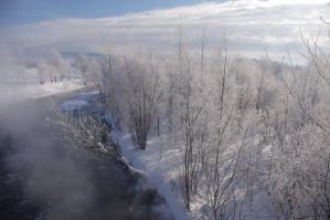 IMGP4381川と霧氷