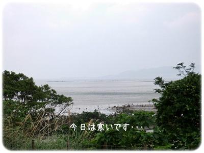 2014_01210007.jpg