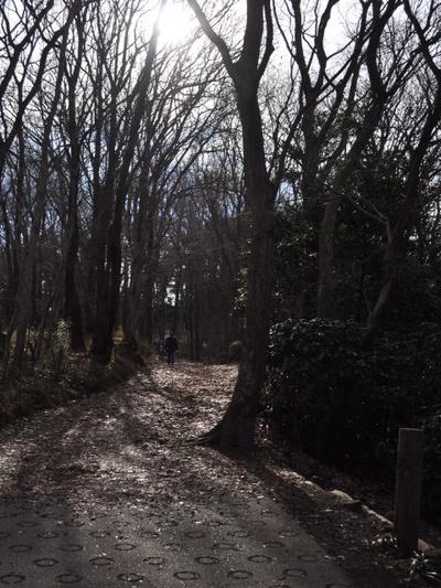二ノ宮吾妻山公園 002