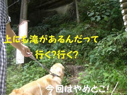伊豆旅行(8月21・22) 160