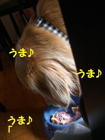 伊豆旅行(8月21・22) 201
