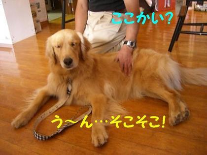 伊豆旅行(8月21・22) 210