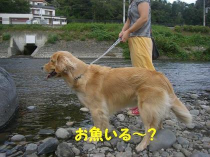 伊豆旅行(8月21・22) 050