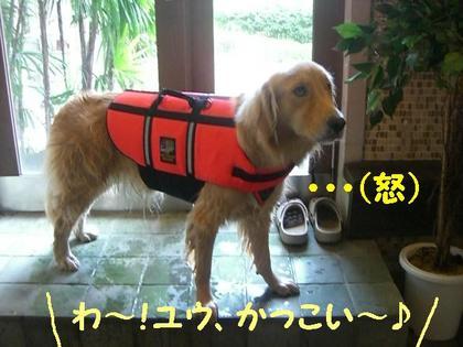 伊豆旅行(8月21・22) 137