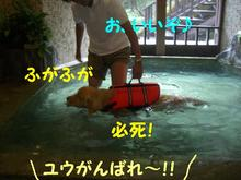 伊豆旅行(8月21・22) 139