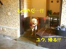 伊豆旅行(8月21・22) 142