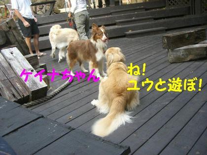 伊豆旅行(8月21・22) 116