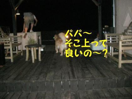 伊豆旅行(8月21・22) 089