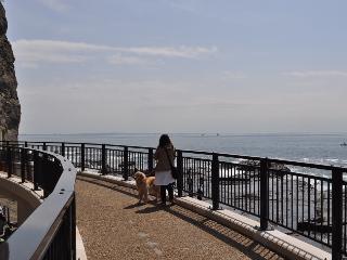 0321江ノ島 004