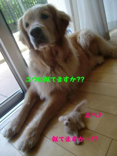 4_convert_20100622071435