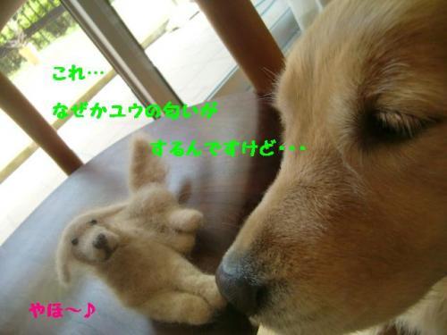 2_convert_20100622071332