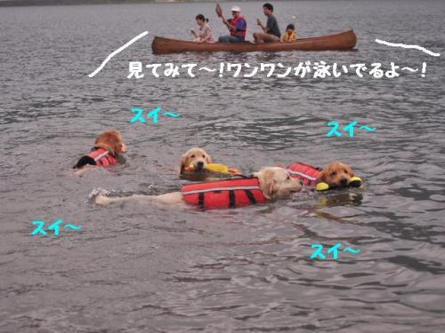 100731西湖+078_convert_20100803093209