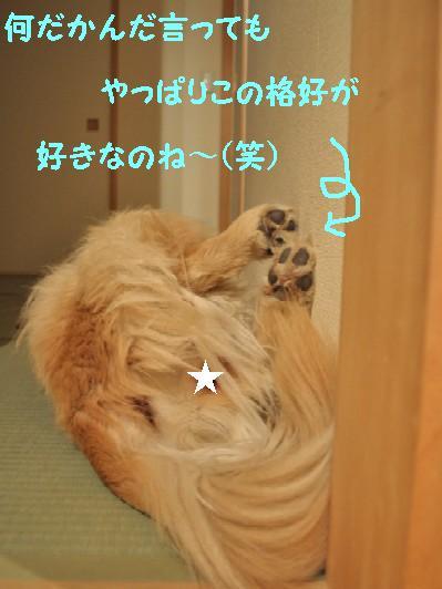 0107 ブログ3