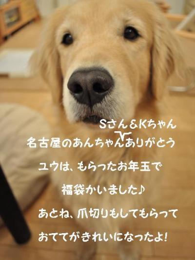 110117 福袋+002_convert_20110109160547