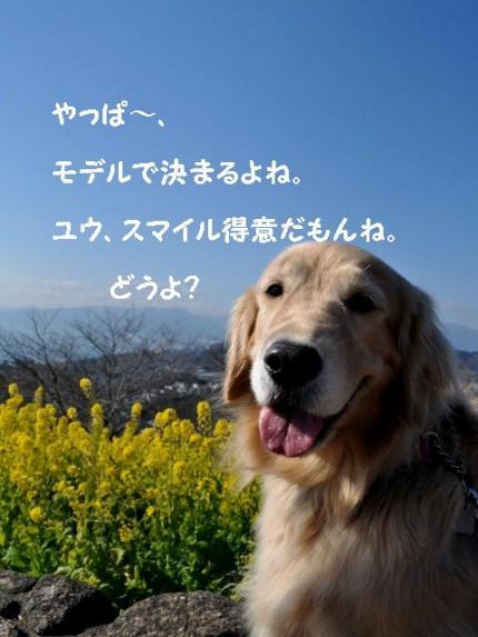 ブログ1_convert_20110122191624