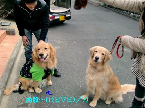 110206 浜松ラン&カフェ+(10)_convert_20110207164003