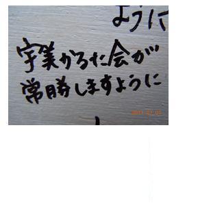 2_20110102213218.jpg