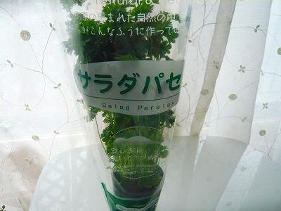 2011_0417_095450-P1040066.jpg