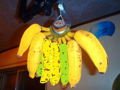banana2.jpg