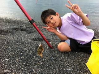 20111112 fish01