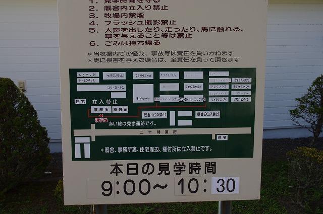 IMGP5688.jpg