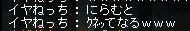 Maple110314_204018.jpg