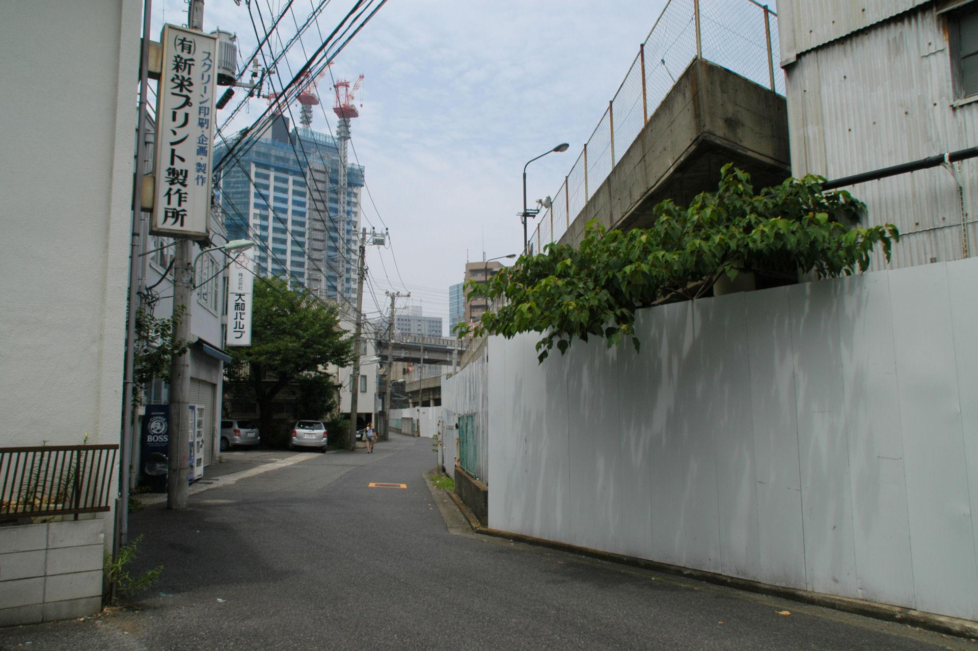 nshishina13070034e.jpg