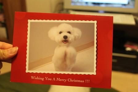 クリスマスカードが届いた♪4