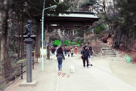 高尾山へ その2 (2)